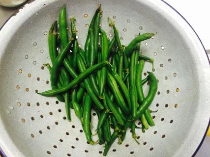 Garden Beans