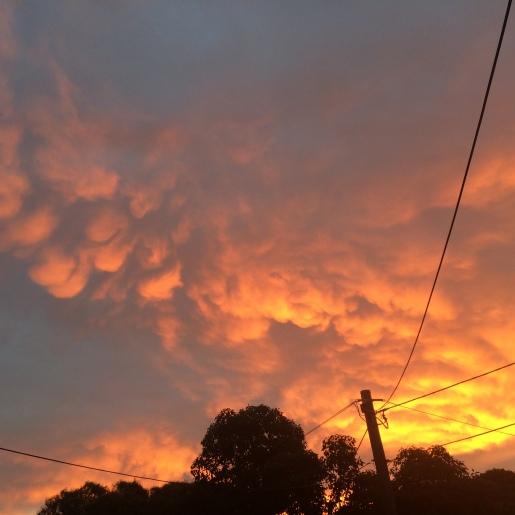 Melbourne Sky 1